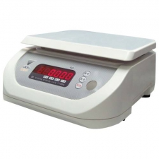 PORTION ELECTRIC SCALE
